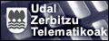 zerbitzu telematikoak